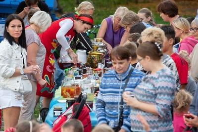 Более 2 тыс человек посетили День добрососедства в Котельниках