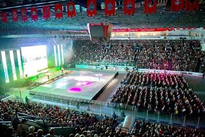 В воскресенье в Ледовом дворце Подольска покажут представление ко Дню города