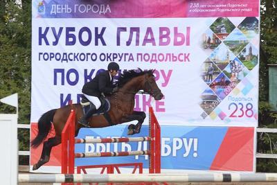 Более 100 спортсменов поборются за Кубок главы Подольска по конкуру и выездке