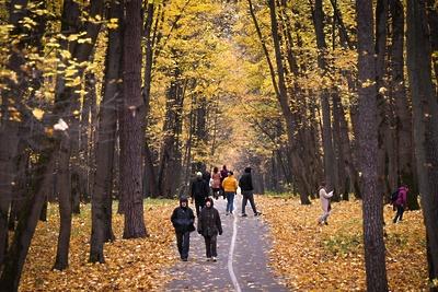 Температура в Можайске, Коломне и Серпухове 20 октября стала рекордной
