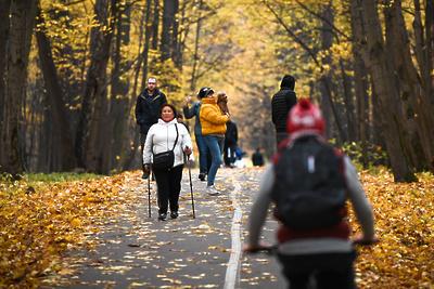 Занятия по скандинавской ходьбе для пенсионеров Домодедова пройдут 17–19 ноября