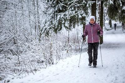 Занятия по скандинавской ходьбе будут проводить в парке Подольска по вторникам и четвергам