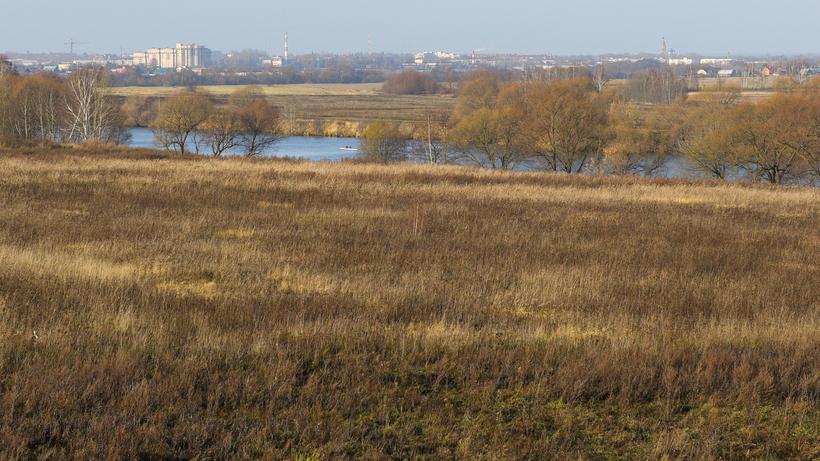 Более 50 га земли передали арендатору под растениеводство в Егорьевске