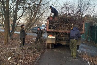 Подрядчик опилил сухие деревья в поселке Железнодорожный Подольска