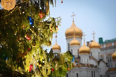 Из главной новогодней ели России сделают магниты и подвески