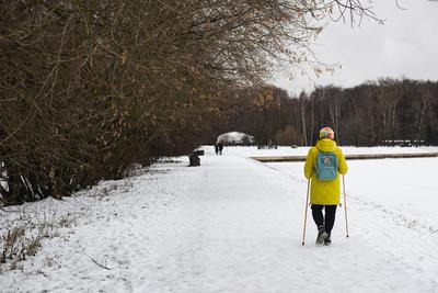 В парке Подольска возобновились занятия скандинавской ходьбой для пожилых жителей
