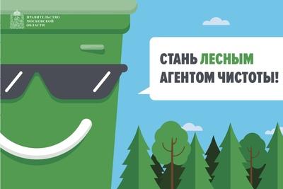 Голосование по местам установки мусорных контейнеров в лесах стартовало на «Доброделе»