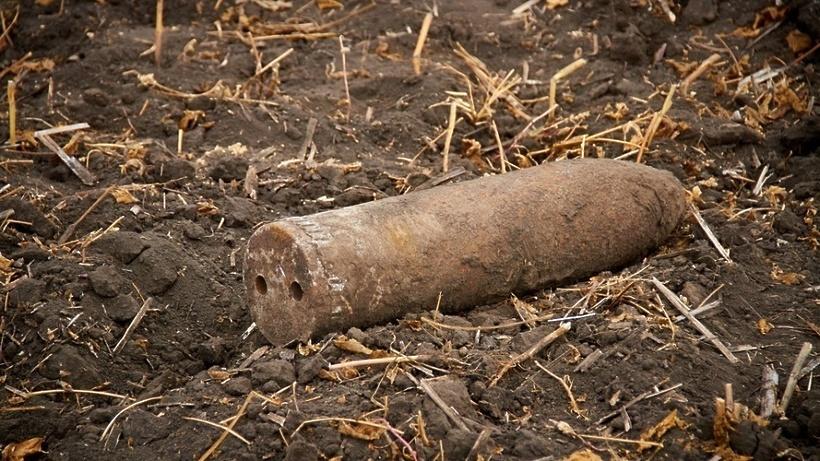 Два боеприпаса времен ВОВ обнаружили в Подмосковье