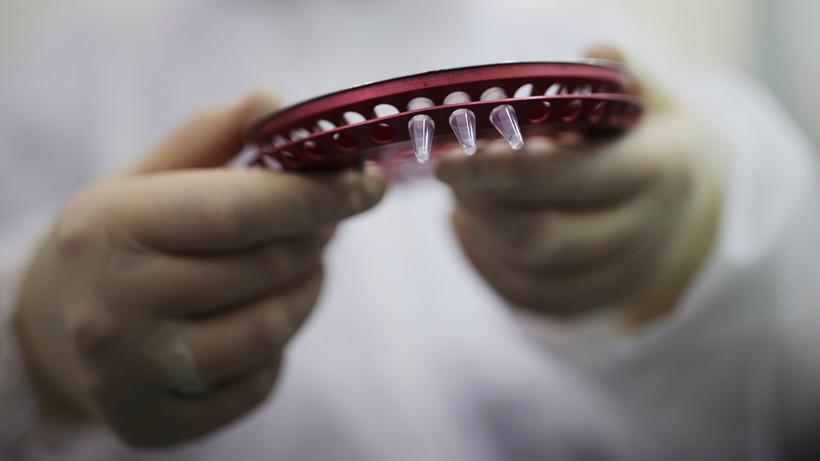 Российские ученые получили антитела, нейтрализующие коронавирус
