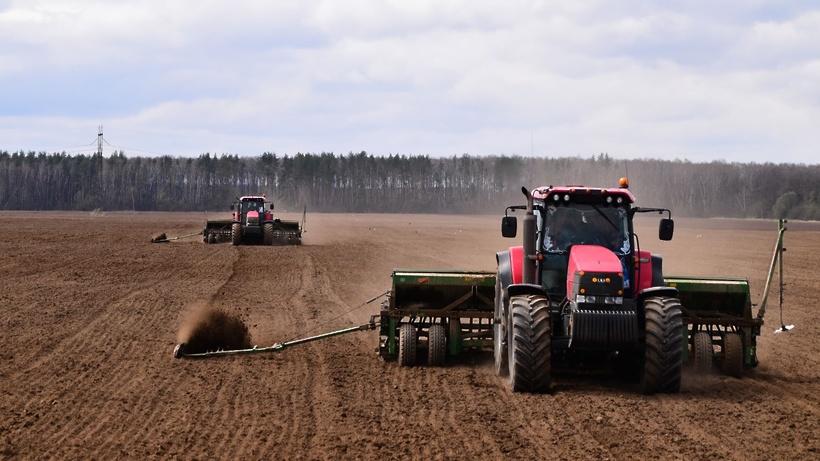 Фестиваль «Зарайская нива» 10 апреля даст старт посевной кампании в Подмосковье