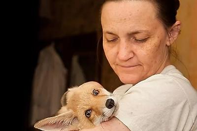 Маленького лисенка из Подольска забрали в центр реабилитации диких животных в Калуге
