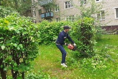 Кустарники начали обрезать на двух улицах в микрорайоне Климовск Подольска