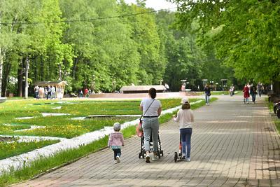 14 парков культуры и отдыха благоустроят в этом году в Подмосковье