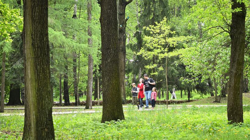 Центральный вход парка в Ступине планируют открыть для жителей в июле