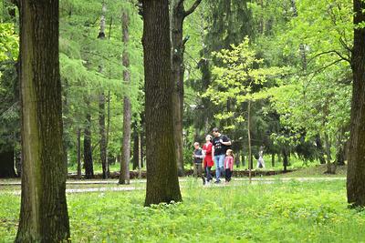 Жителям Подмосковья рассказали, где можно прогуляться пешком и насладиться красивым видом