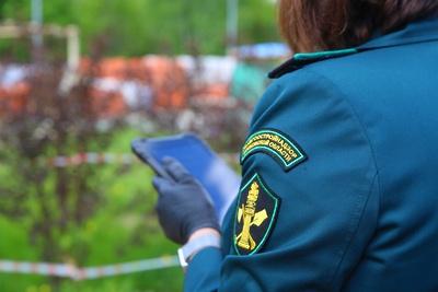 В Подмосковье проверили соблюдение санитарных требований у всех жилых объектов