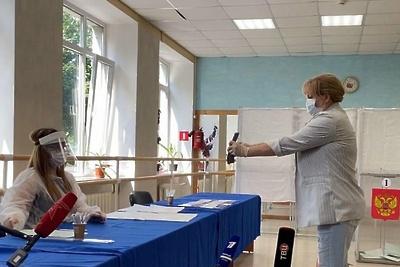 Председатель ЦИК проголосовала по поправкам в Конституцию в Истре