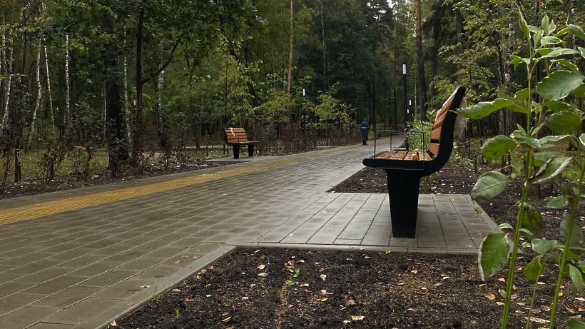 Кафе может появиться в парке «Малаховское озеро» Люберец