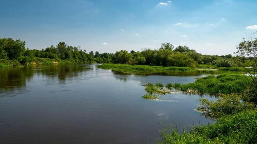 В Лосино‑Петровском займутся проблемой загрязнения реки Клязьмы
