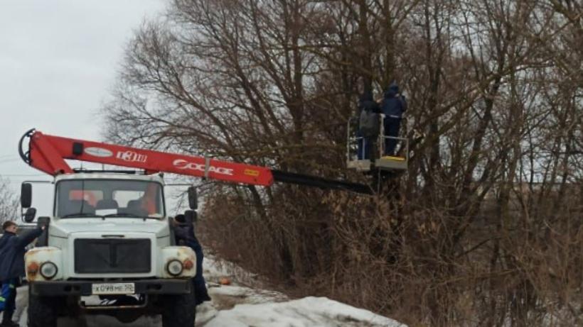 Фотоловушка появилась на месте сброса мусора в деревне Быковка Подольска