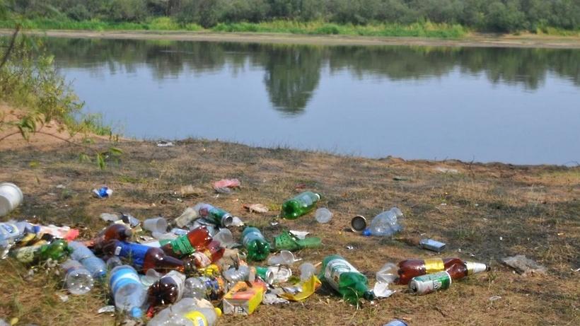 Берега реки Учи расчистят в Щелкове 30 апреля
