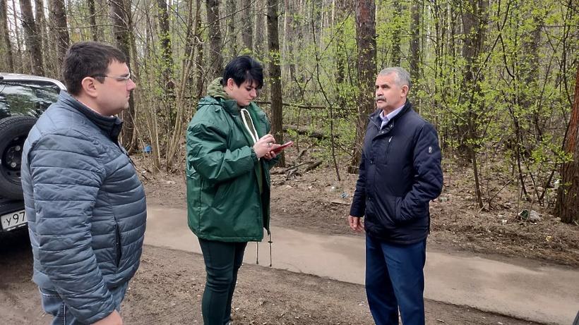 Лес в районе станции Бахчиванджи в Щелкове планируют облагородить