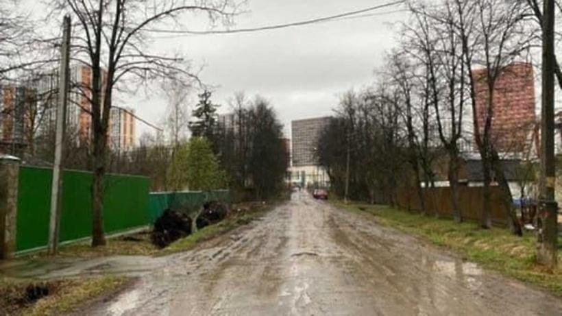 Незаконную вырубку аллеи из лип пресекли в Одинцовском округе