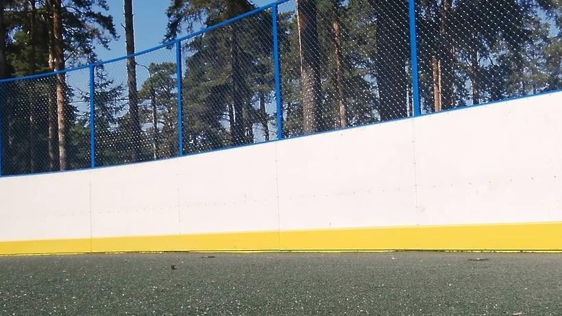 Резиновое покрытие укладывают на хоккейной площадке в Кузьминском лесопарке Котельников